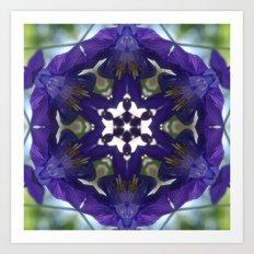 Blue columbine mandala 2 Art Print