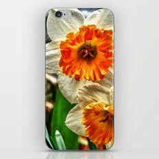 Faithful and True iPhone & iPod Skin