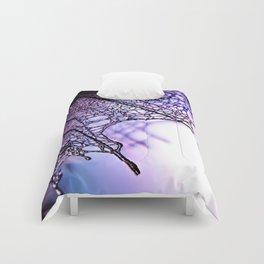Draco Comforters