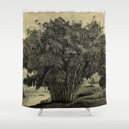 The Gardeners' Chronicle 1881 Shower Curtain