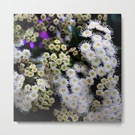 A Flurry Of Garden Fur  Metal Print
