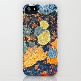Lichen Art iPhone Case