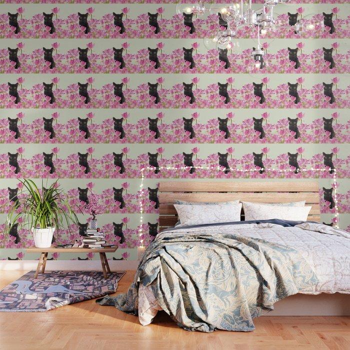 Lotus Flower Blossoms Black Cat Wallpaper