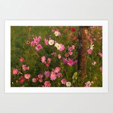 Pinks & Tree  Art Print