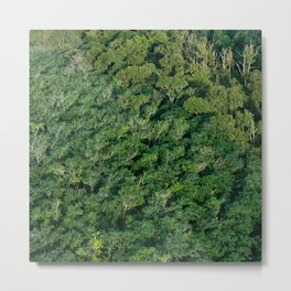 Arial tropical forest Metal Print
