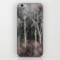 ohio iPhone & iPod Skins featuring Ohio Trees by David Pringle