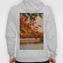 Autumn Scene (Color) Hoody