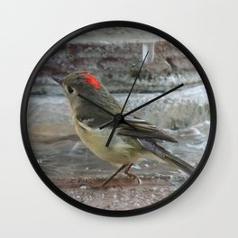 Ruby-Crowned Kinglet At The Fountain Wall Clock