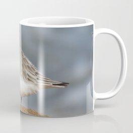 Sanderling Coffee Mug