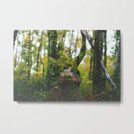 Into the woods Metal Print
