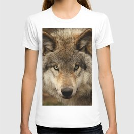 Undivided attention T-shirt