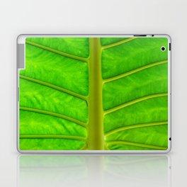 Palm Print Laptop & iPad Skin