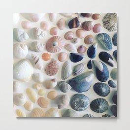 Shells of Luskentyre Metal Print