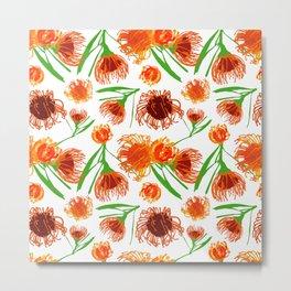 Cute Australian Native Flower Print - Lovely Pincushions Metal Print