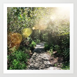 Sunny Path Art Print