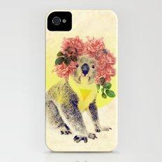 Australian Icon: The Koala Slim Case iPhone (4, 4s)