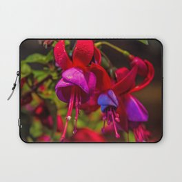 Fuchsia Dreams Laptop Sleeve