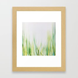 Grasses Framed Art Print