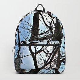 Trees & Sunshine Backpack
