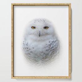 Dreamy Encounter with a Serene Snowy Owl Serving Tray