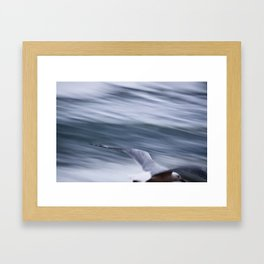Drifting with the wind... Framed Art Print