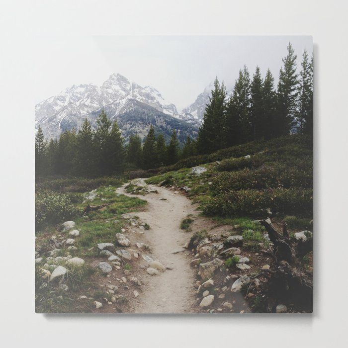 Teton Trail Metal Print