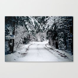 Winter Welcome Canvas Print