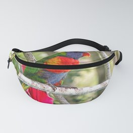 Rainbow Lorikeet sat on a metal structure Fanny Pack