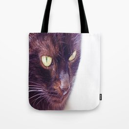 Chilly, more brown than black cat in eyecontact Tote Bag