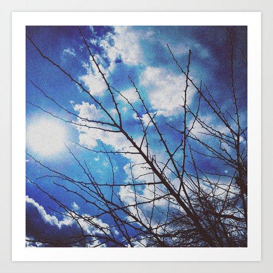 Thorns on blue Art Print