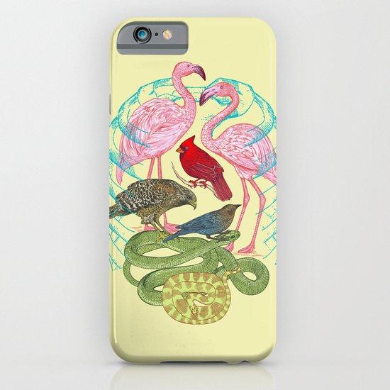 Wild Anatomy II iPhone & iPod Case