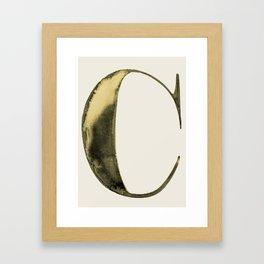 cestlaviv  C wash on biege Framed Art Print