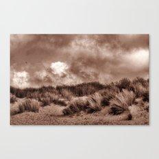 Walking the dunes Canvas Print