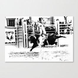 Rodeo Bull Rider Canvas Print