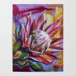 The King Protea - hot pink and yellow ochre Poster