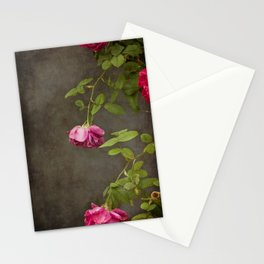 Pink On Gray Stationery Cards