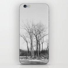The Un-Winter iPhone & iPod Skin