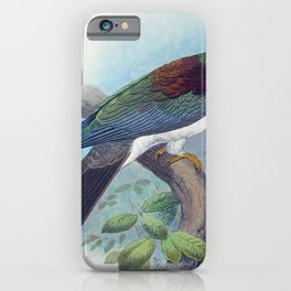 Vintage Print - The Birds of Australia (1910) - Norfolk Island Kererū iPhone Case