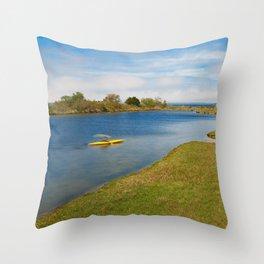Assateague Island Marsh Throw Pillow