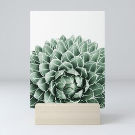 Succulent splendour Mini Art Print
