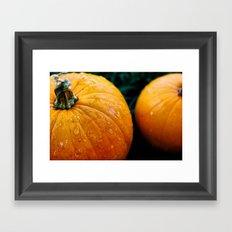 Pumpkins and Tears Framed Art Print