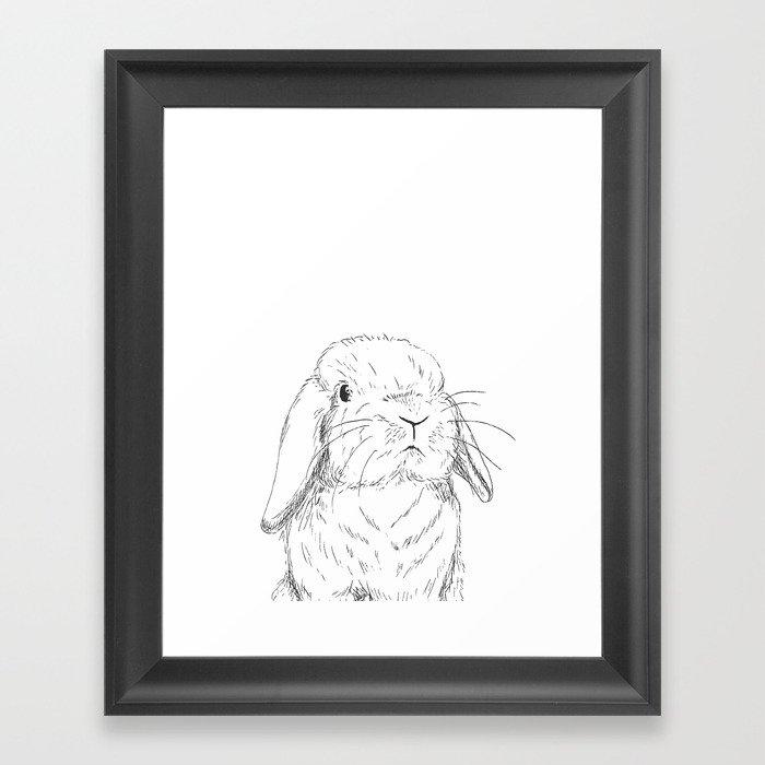 Curious Holland Lop Bunny Gerahmter Kunstdruck