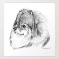 pomeranian Art Prints featuring Pomeranian by Doggyshop