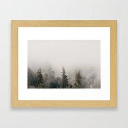 Forbidden Forest - Wanderlust Nature Photography Framed Art Print