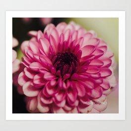 Pink Goodness Art Print