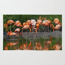 Flamingo Reflection Rug