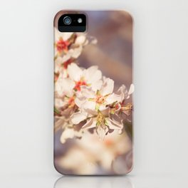 Sweet Little flowers at sunset iPhone Case