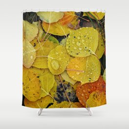 Water droplets on autumn aspen leaves Shower Curtain
