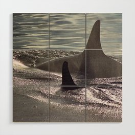 Orca Wood Wall Art