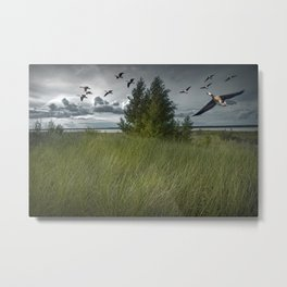 Flight of Geese along the Bay Metal Print